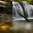 Autumn at Wyandot Falls by Lori Deiter