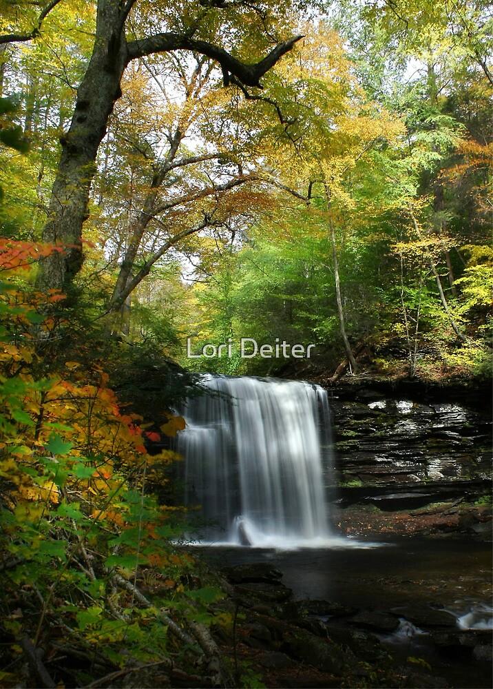 Rickett's Glen ~ Harrison Wright Waterfall by Lori Deiter