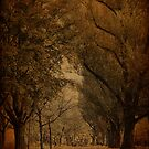 Autumn Day at the Park - Frankfurt Germany by Jean-Pierre Ducondi