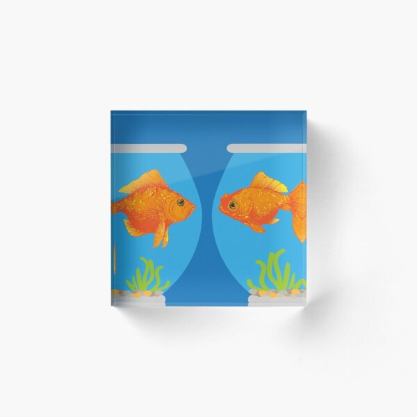 Two Little Goldfish in their Fish Bowls | Vintage Goldfish |  Acrylic Block