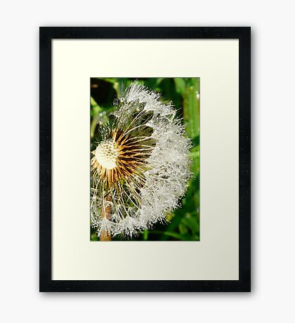 Almost Gone Framed Print