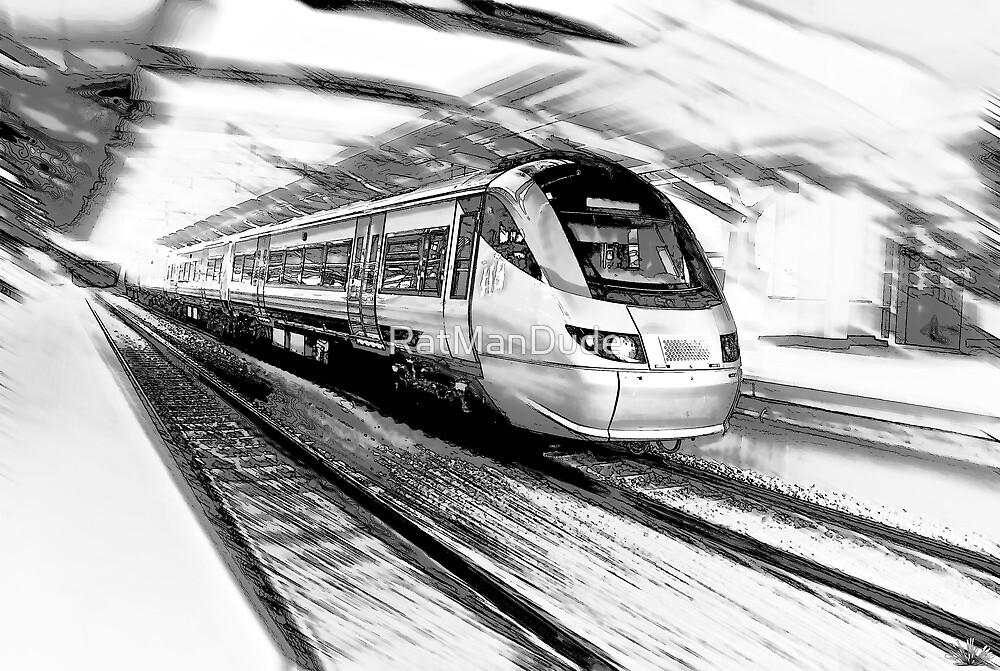 The Gautrain - High Speed Commuter Rail. by RatManDude