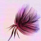 Floral suspension  by cardwellandink