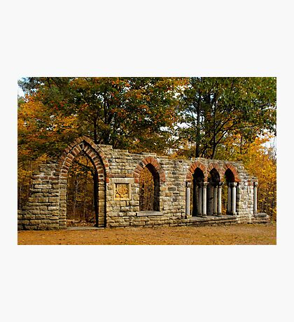 Ruins among the leaves Photographic Print