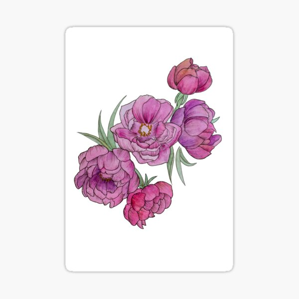 Peonies in Pink and Ink Sticker