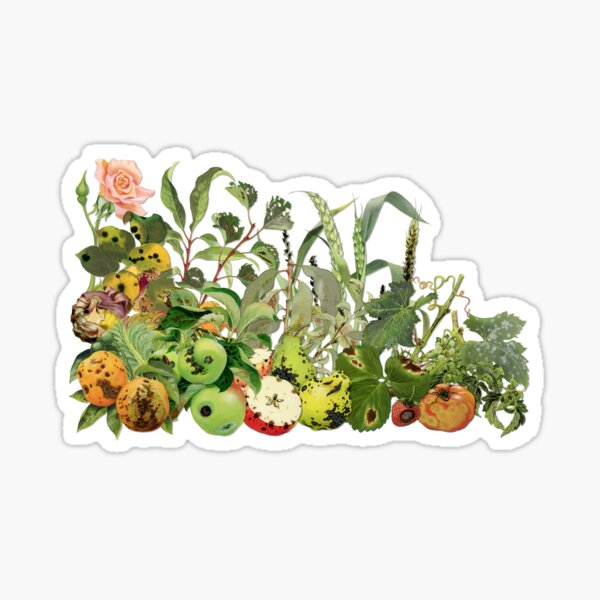 Plant disease cornucopia Sticker