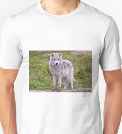 They're Growing - Arctic Wolf Pups  T-Shirt