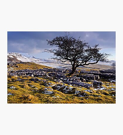 Limestone Country - The Yorkshire Dales Photographic Print