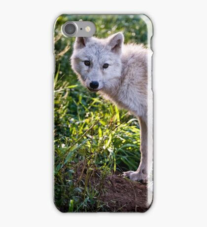 Arctic Wolf Pup iPhone Case/Skin