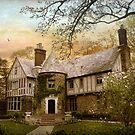 Tudor Estate by Jessica Jenney