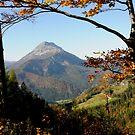 Oetscher View by Bertspix1