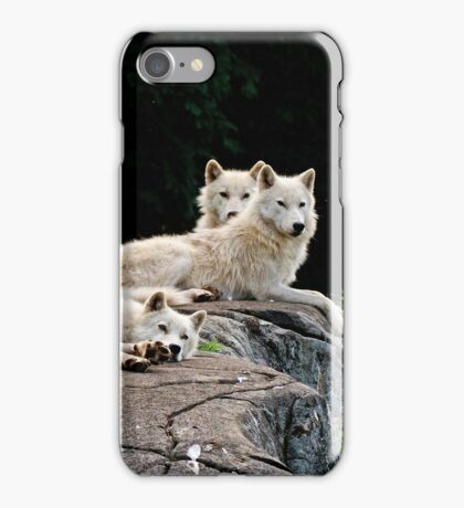 Arctic Wolf Pack iPhone Case/Skin