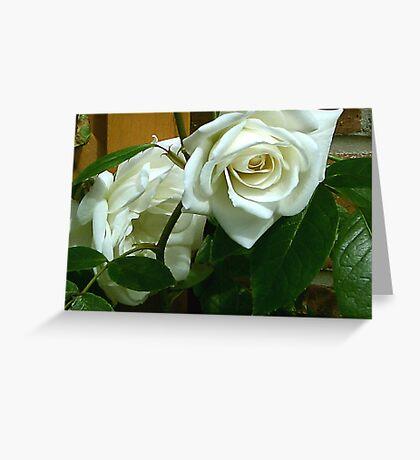 White Rose #1 Greeting Card