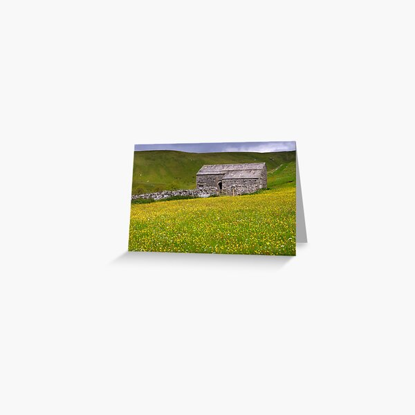 Summer meadow - The Yorkshire Dales Greeting Card