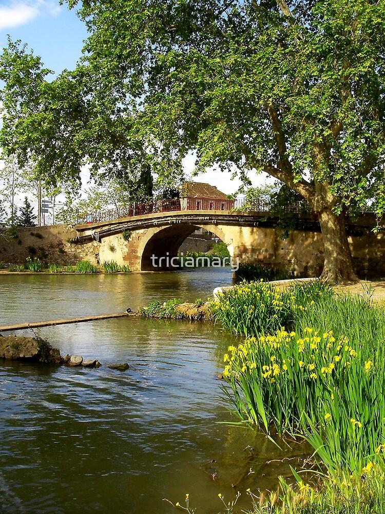 Ventenac Bridge by triciamary