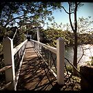 Bridge by Adriano Carrideo