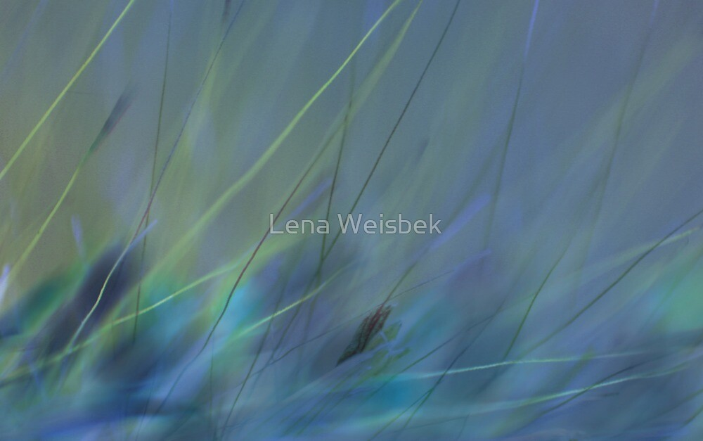Lost...in Blue by Lena Weiss