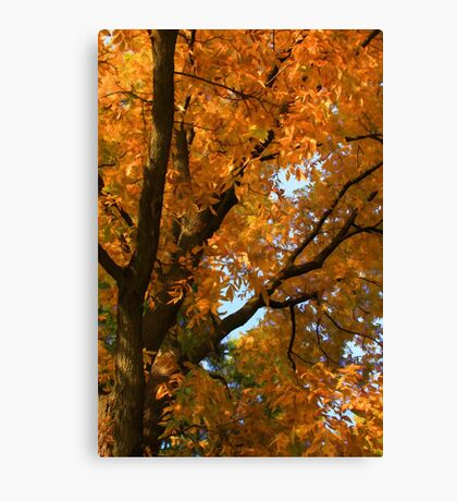 Fall's Finery Canvas Print