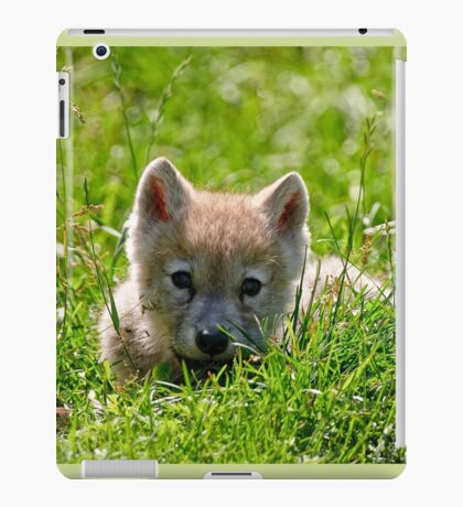 If they could only stay so young - Arctic Wolf Pup iPad Case/Skin