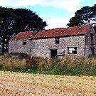 Derelict Barn by Trevor Kersley