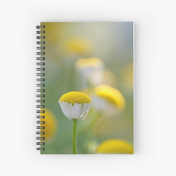 Spanish chamomile  Spiral Notebook