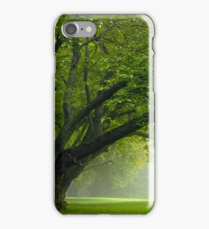 In The Morning iPhone Case/Skin