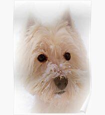 The Scottie Dog.  Poster