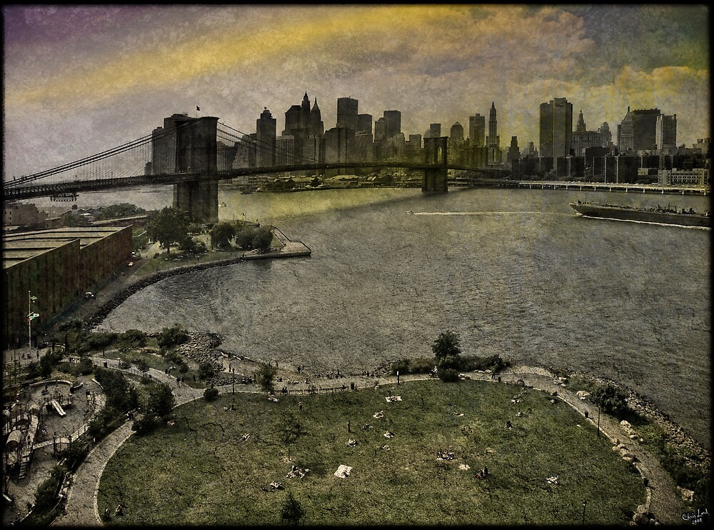 View from the Manhattan Bridge, Brooklyn USA by Chris Lord