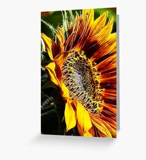 Fractalius Sunflower VI Greeting Card