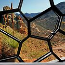 Window on Arkaroola by Peter Hammer
