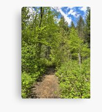 Mountain Path Canvas Print