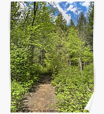 Mountain Path Poster