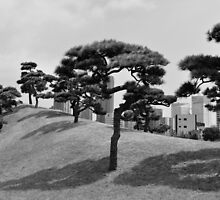 Japan Trees by Hilm3r -