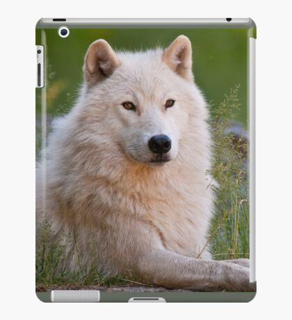 Arctic Wolf  iPad Case/Skin