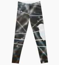 You've Branched Out Leggings