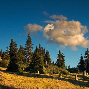 Light Along The Mountain Slope by kkart