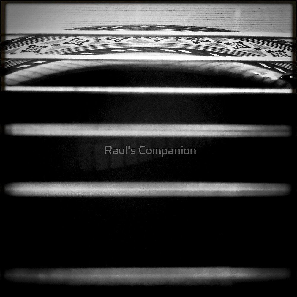 The Art of Sound by Raul's Companion