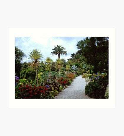Abbey Gardens, Tresco Art Print