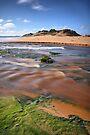 Powlett River by Jim Worrall