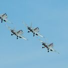 FA-18 Hornets by Richard  Willett
