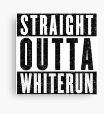 Adventurer with Attitude: Whiterun Canvas Print