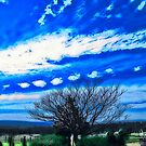 The Sky's The Limit - Laidley Queensland by Neil Ross