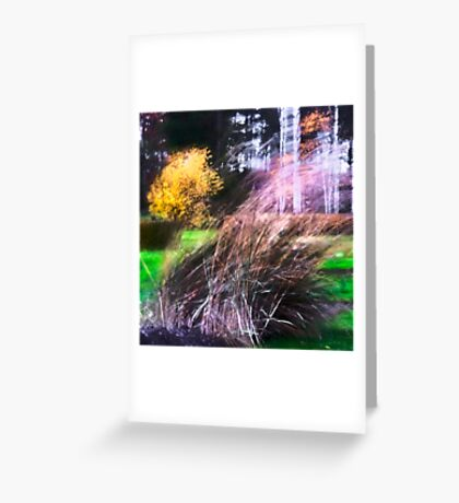 Autumn Storm in the Garden Greeting Card