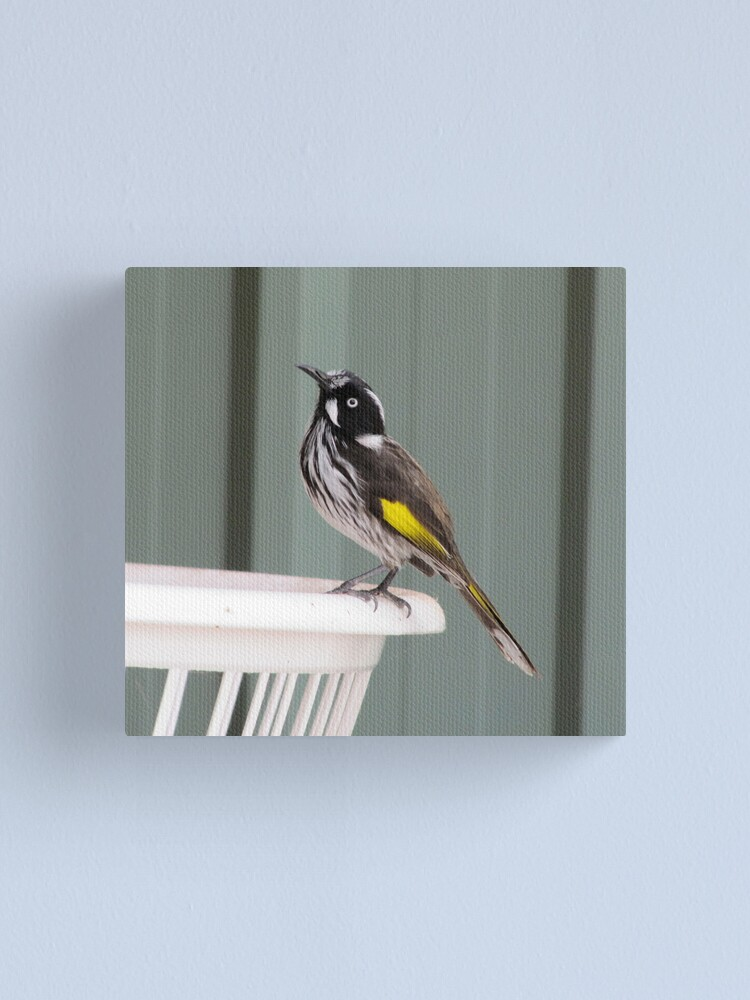 Alternate view of Fly Catcher Canvas Print