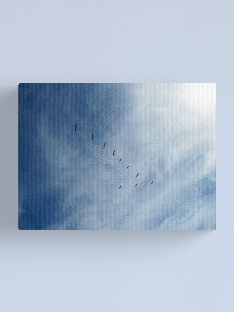 Alternate view of Distant Birds  Canvas Print