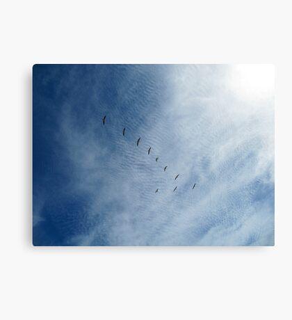 Distant Birds  Canvas Print