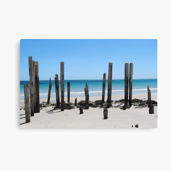 Posts Canvas Print