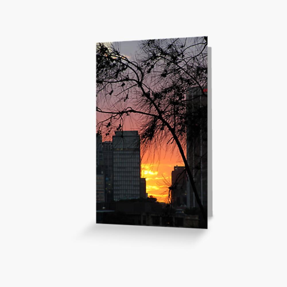 Sydney Sunset Greeting Card