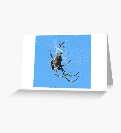 Balfour Spider Greeting Card