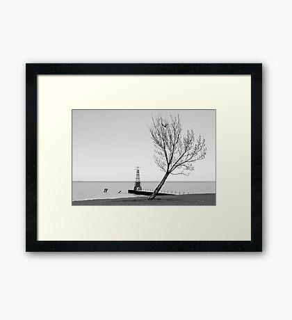 Alone against the Wind Gerahmtes Wandbild